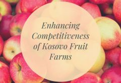 Packaging Machinery to Enhance Competitive Edge of Kosovo Fruit Exporters